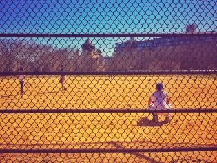 Baseball Brooklyn Park - Delicieuse Vie
