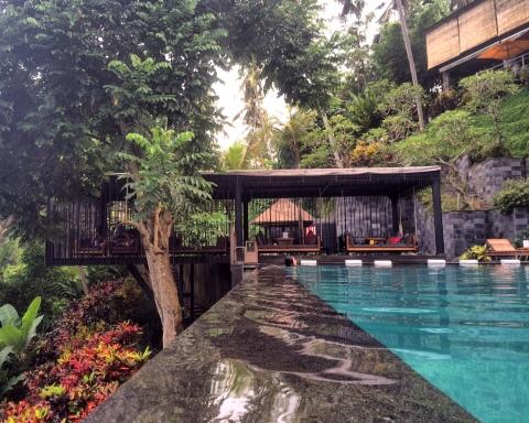 Piscine Jungle Fish Ubud Bali