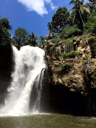 Waterfall Ubud Bali Indonésie