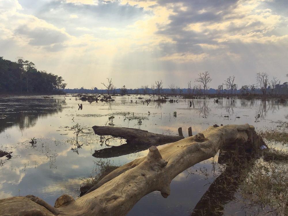 Lac Neak Pean Cambodia - délicieuse vie