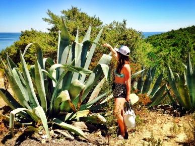 Praia dos Coelhos - Delicieuse Vie