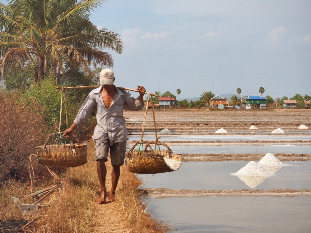 Champs de sel Kampot - Farmer
