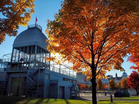 vieux port Montreal Délicieuse Vie - couleurs d'automne