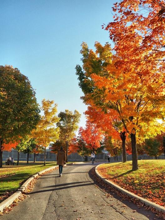 Oldport Montréal - Delicieuse Vie chemin