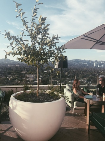Waldorf Astoria rooftop Beverly Hills